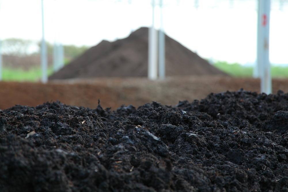 Fase final de produção do fertilizante