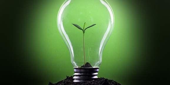 Como anda a parceria da sua empresa com o meio ambiente