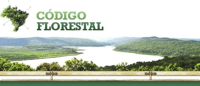 Fique por dentro do novo código florestal paulista