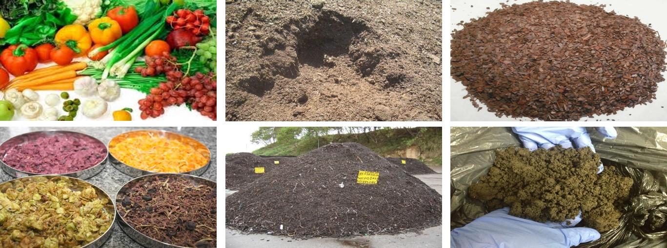 Resíduos_para_compostagem