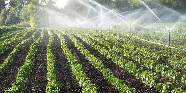 irrigação de água no brasil