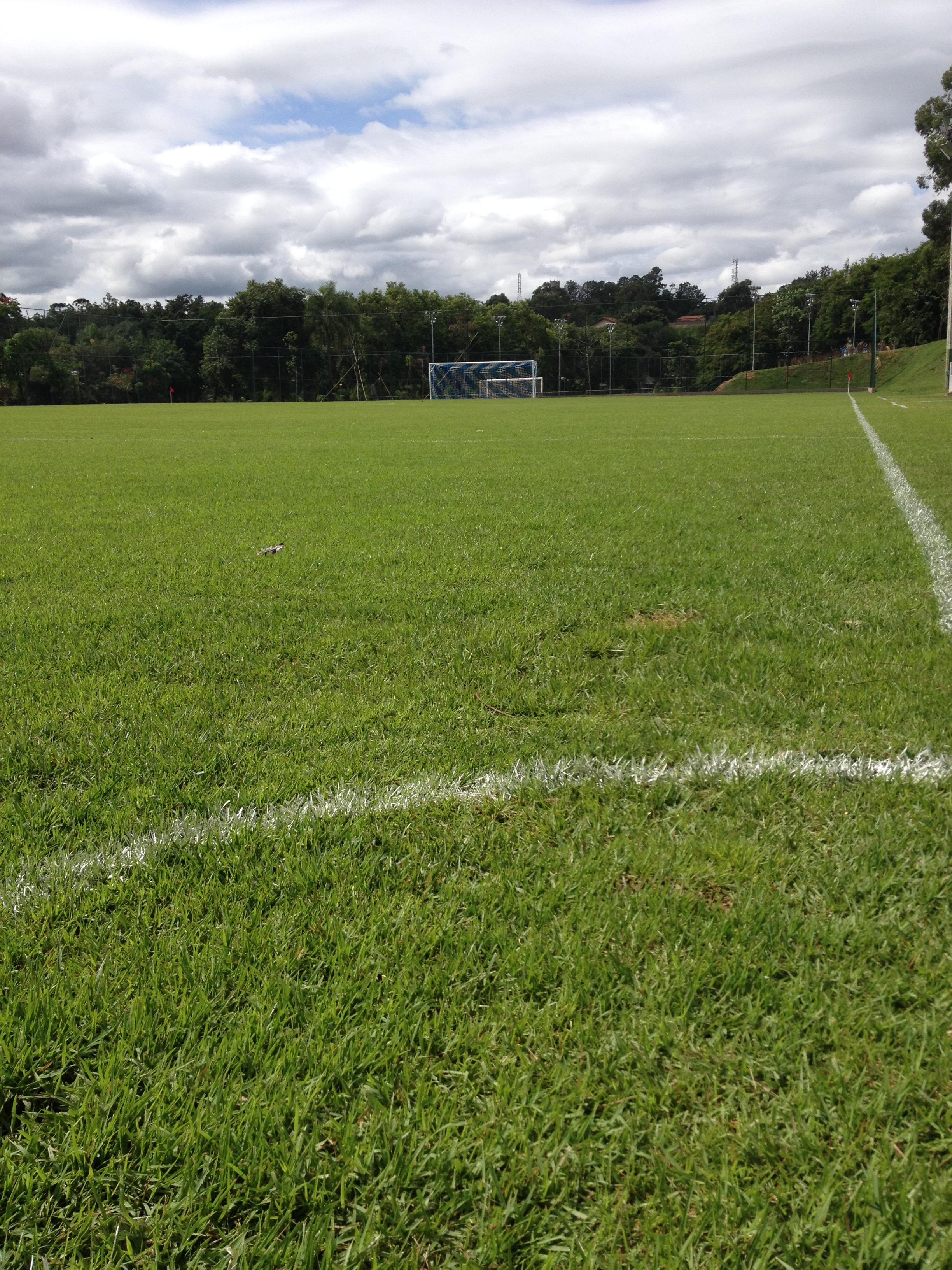 Gramados esportivos - Terafértil Parques e Jardins