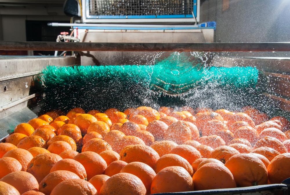 Efluentes de indústrias alimentícias